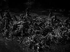Водяные дьяволы в Hunt: Showdown