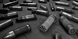 Спецбоеприпасы (Custom Ammo)